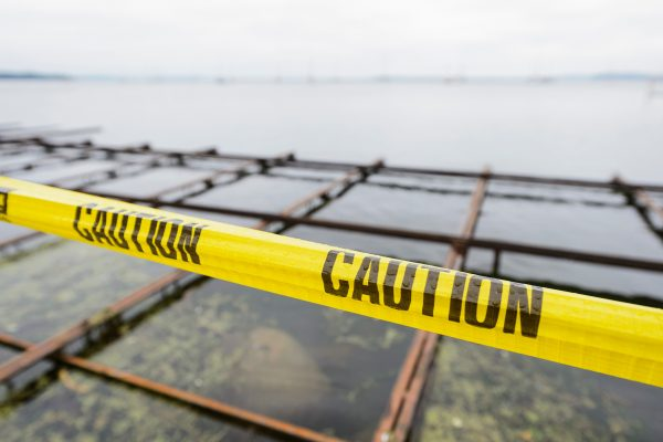 Caution tape marks off a closed section of Lake Mendota